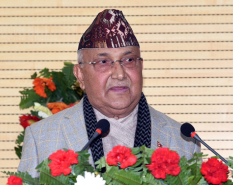 Govt's priority is strong governing system: PM Oli