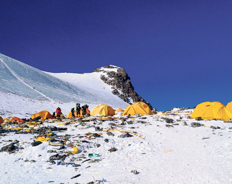 Sherpas to remove dead bodies, waste from Everest