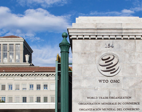 WTO chief stresses urgency of easing trade tensions to improve global economy