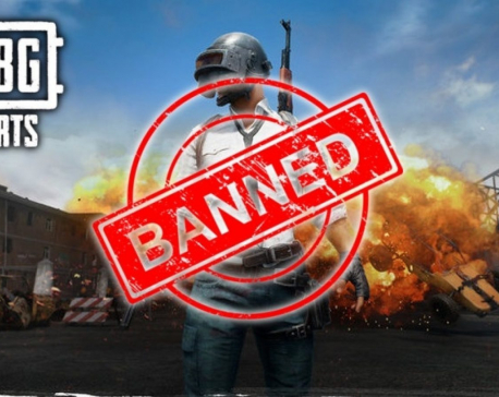 Government bans PUBG