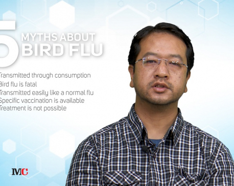 Five myths about Bird Flu (with video)