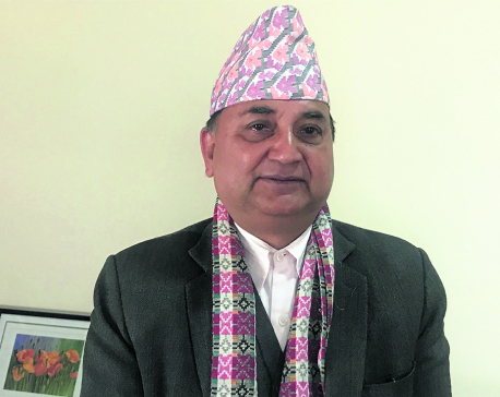 Preservation of public property becoming daunting challenge: DPM Pokharel