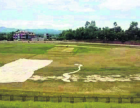 From grazing-land to potential international-standard cricket venue