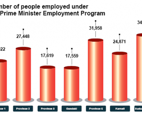 175,909 unemployed benefited from PM Employment Program