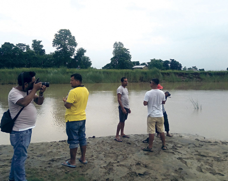 Tikapur dolphins attract tourists