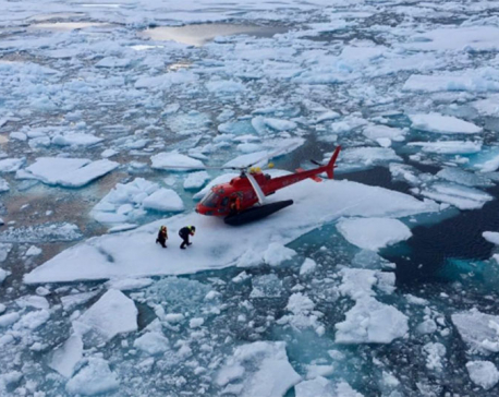 An Arctic 'miracle': Icebreaker salvages lost recordings of Beluga whales