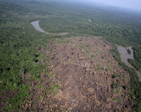 Deforestation in Brazil, vote in Argentina endanger EU-Mercosur pact