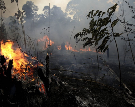 Brazil says open to aid for Amazon fires, but will decide how it's used