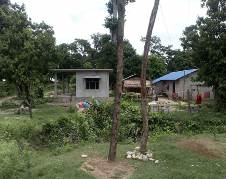 Forest encroachment in the name of flood victims