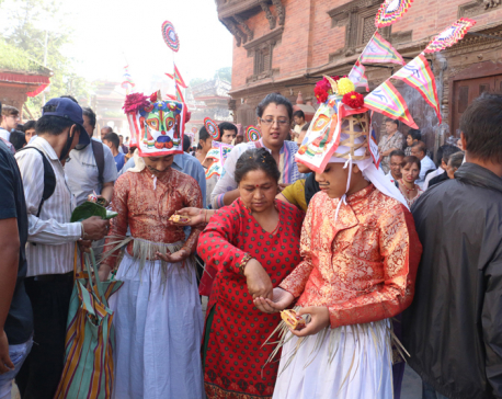 Celebrating Gaijatra