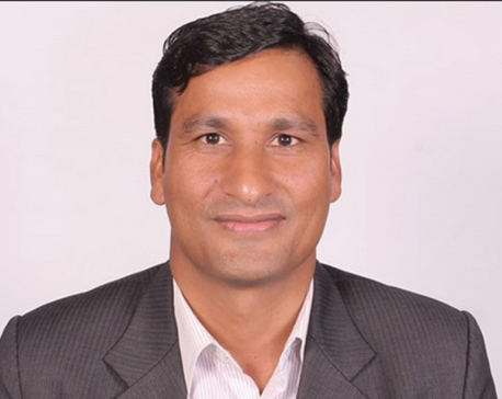Minister Basnet urges one and all to work with govt to promoting green urbanization