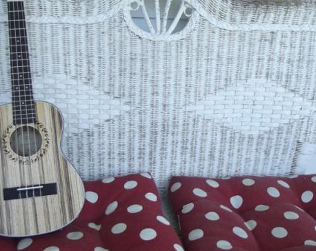 For beginner ukulele players