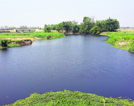 Citizen science project aims for urban resiliency along Danda River