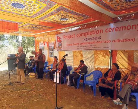 KOICA volunteer supports income generation in Hetauda