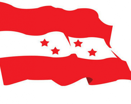 Nepali Congress concerned over criminal case against NSU leaders