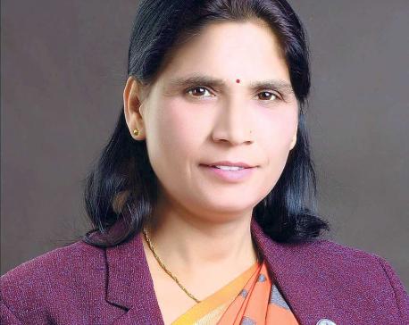 Govt to act against public land encroachment: Minister