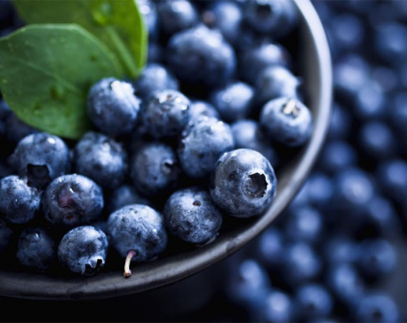 Eating blueberries every day could help decrease blood pressure