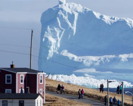 Vodka firm loses valuable iceberg water in apparent heist