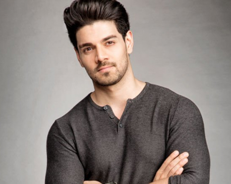 Sooraj Pancholi to donate his earnings from 'Satellite Shankar' to an army camp