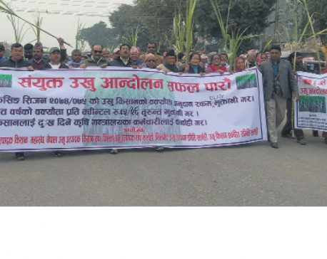 Sugarcane farmers begin protest against government