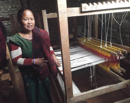 Allo, a low-cost high-income venture for Parbat women