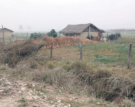 DPR ready for industrial area in Sarlahi