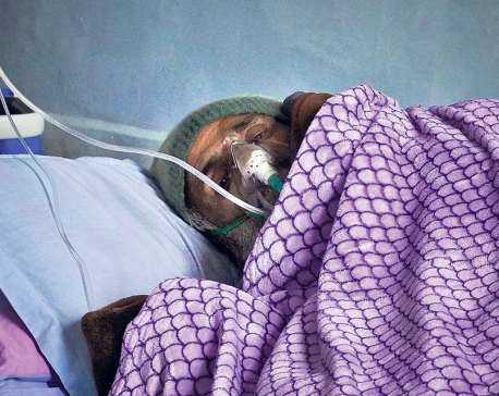 Bill could not explore ways for reforms-Dr KC