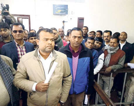 Province 2 govt employees protest against manhandling of secretary by minister