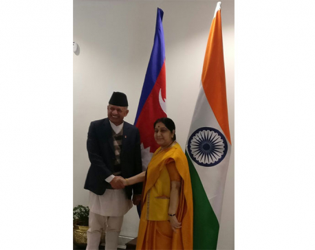 Foreign Minister Gyawali meets with his Indian counterpart Swaraj
