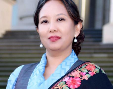 Ambassador Sherpa refutes rumors in media