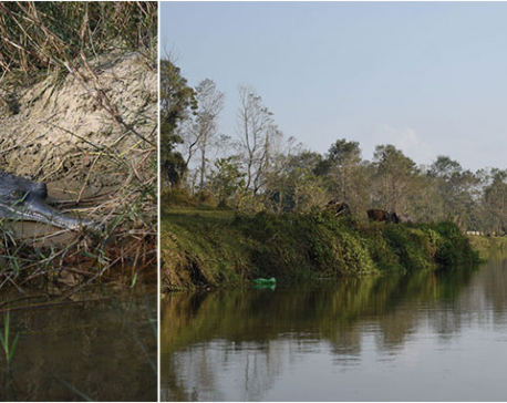 Magic of Rapti River