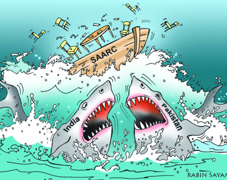 SAARC is sinking