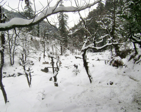 Snowfall and incessant rain affect life in Kalikot
