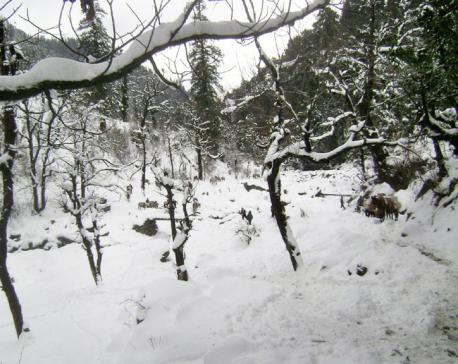 Snowfall and incessant rain affect life in Kalikot