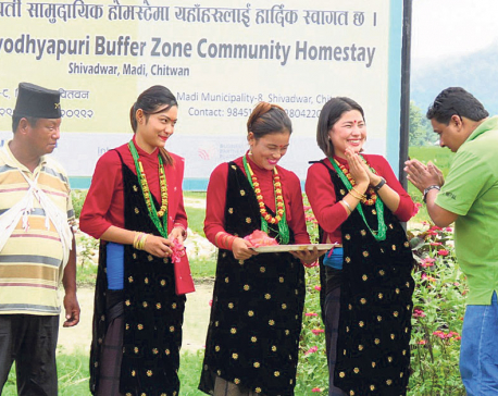 Solar light powers homestay in Chitwan's Madi