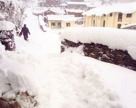 Bajura under snow grip again
