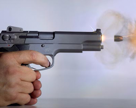 Kalanki incident takes new turn, two guns seized not used in incident