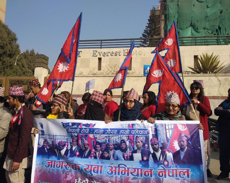 IN PICTURES: Nepali Topi Diwas 2075