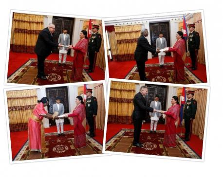Ambassadors present credentials to President