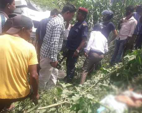 Three dead,  seven injured as a truck hits Magic van in Siraha