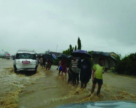 Whither disaster preparedness?