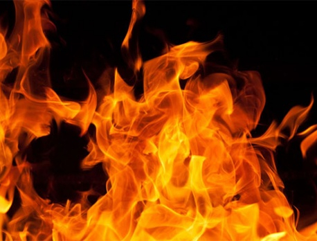 Property worth Rs 9.8 million gutted in fire in Solukhumbu