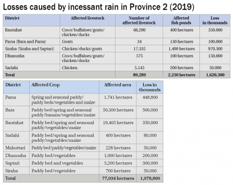 Province 2 suffers agro loss worth Rs 3.59b due to floods, landslides