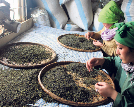 India tightens Nepal's tea exports