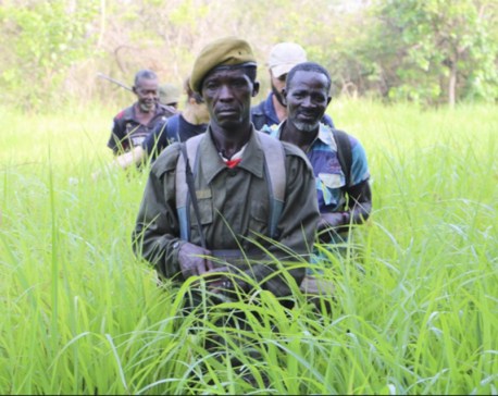 Post-war South Sudan tries to protect wildlife from poaching