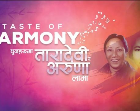 'Taste of Harmony' concert in Pokhara