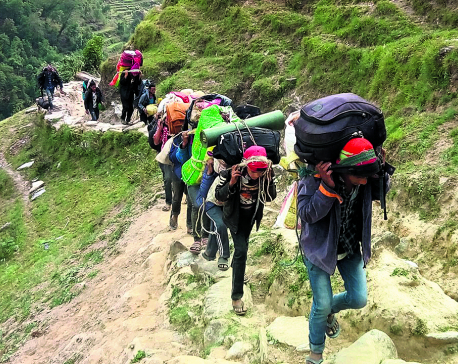 Overharvesting of yarsa harming nature, culture of Dolpa