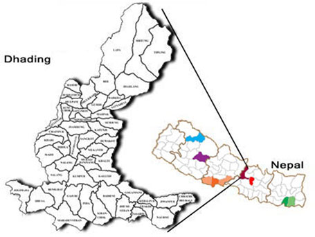 Five Dhading local units fail to unveil budget