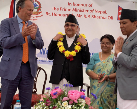 PM Oli urges Nepali residing abroad to return home (with pics)