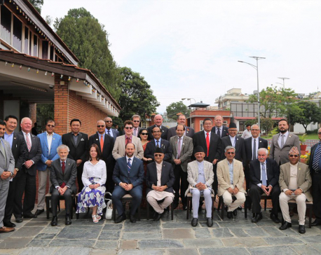 Government urges HCG/HCs to promote Nepal's economic diplomacy